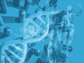 New IT DNA at Genomics England