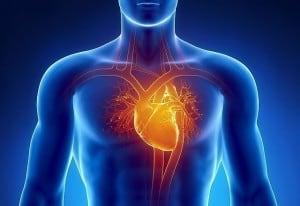 A 240 day cardiovascular healthcare campaign for Uttar Pradesh