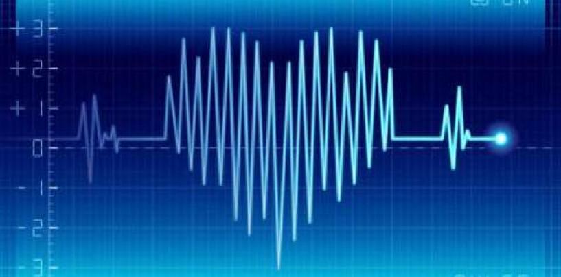 PulseModel: the death predictor