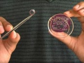 Contact lens that brings internet connectivity into any object over WiFi