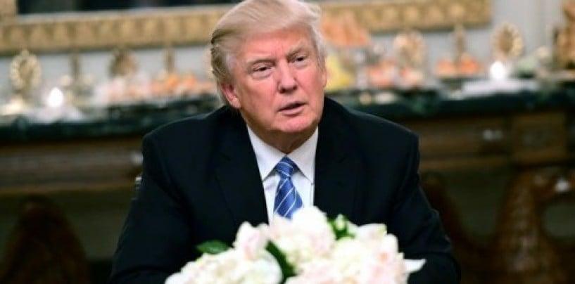 Trump government might delay and kill the startup visa