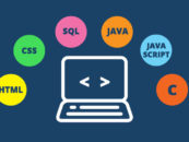 Most in-demand Programming Languages for Indian Developers