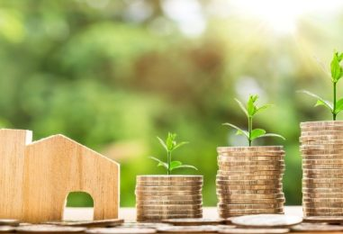 Insurtech startup Plum raises Rs 7 crores in seed funding